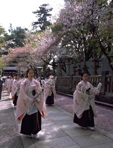 桜花祭(公式用).jpg